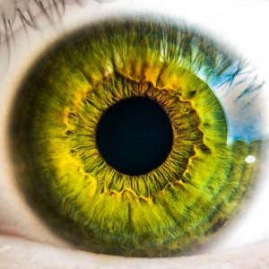 eye-931978_1280